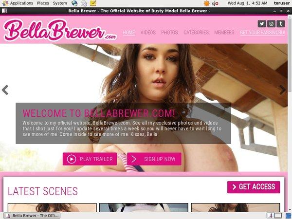 Bella Brewer Passwords