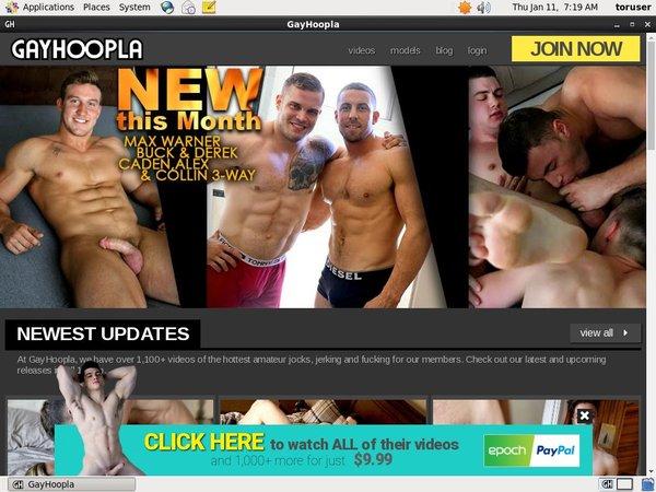Signup Gayhoopla Paypal