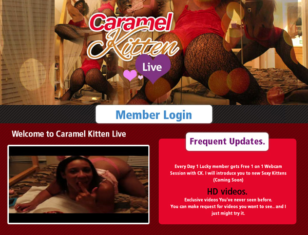 Caramel Kitten Live Limited Discount